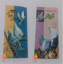 بهترین کتاب دنیای کبوترها
