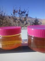 پخش و فروش عسل طبیعی با بهترین قیمت