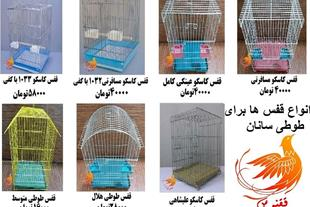 قفسهای زیبا برای طوطی سانان