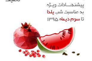 فروشگاه اینترنتی دالانو -فروش ویژه جشنواره شب یلدا