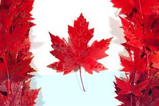 اخذ ویزا تضمینی کانادا بدون نیاز به ویزا شنگن