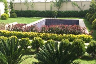 طراحی و اجرای فضای سبز لوکس بیرونی و داخلی