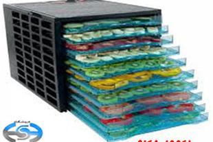 دستگاه خشک کن میوه مدل AL13000-E10 فروشگاه شایان