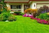 طراحی، اجرا و نگهداری فضای سبز با طراحی مدرن و زیب