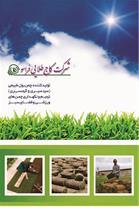 چمن رول - تولید چمن طبیعی آماده
