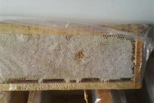 فروش عسل مخصوص سراب -عمده -خرده