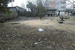 زمین قیمت مناسب در محموداباد سرخرود - 375 متر