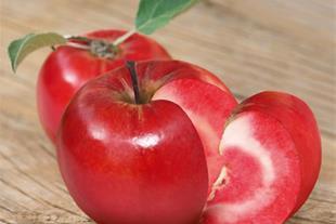 نهال سیب تو سرخ(سیب خونی||سیب رد لاو)