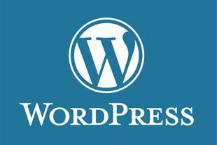 همکاری با طراح سایت وردپرس و برنامه نویس وب