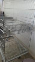 تولید قفس پرندگان زینتی