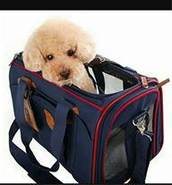 فروش کیف حمل سگ و گربه