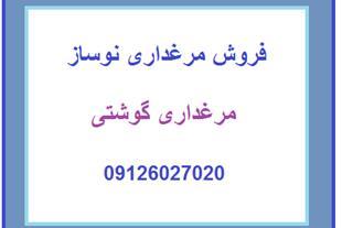 فروش مرغداری گوشتی 40،000 قطعه در اصفهان