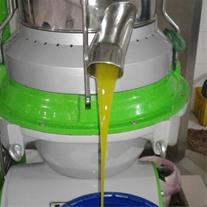 فروش روغن زیتون مستقیم از تولید کننده