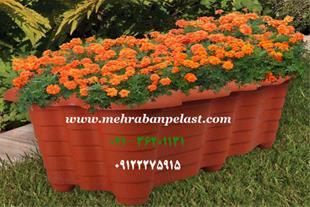 فروش گل و گلدان