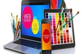 طراحی حرفه ای انواع سایت
