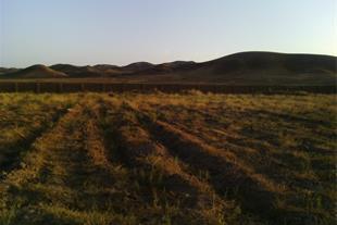 یک هکتار زمین کشاورزی با امکانات - دیوارکشی و چاه