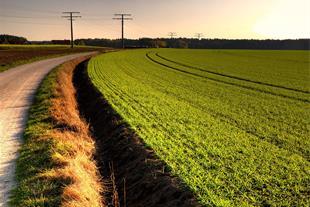 فروش زمین زراعی با موقعیت استثنائی