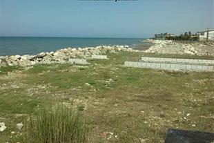زمین ساحلی در شمال سرخرود - 200 متر