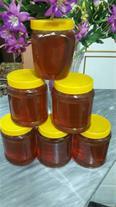 فروش عسل نهاوند