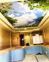 سقف کشسان (باریسول) دکوراسیون داخلی آبسال