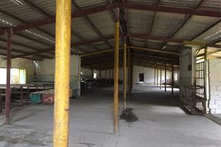 فروش کارخانه انزلی