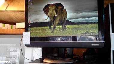 کامپیوتر HP ابعاد 22 اینچ - 1