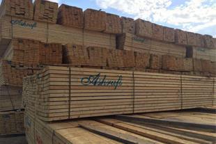 واردات , توزیع و فروش چوب یولکا از کشور روسیه