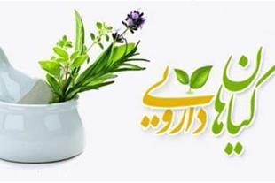 فروش انواع گیاهان دارویی ، داروهای گیاهی و فرآورده