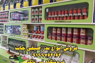 فروش بذر هندوانه در واریته های مختلف و بهترین نوع - 1