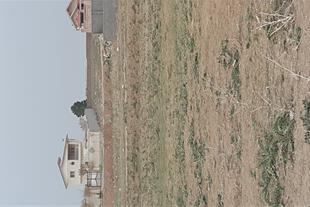 فروش زمین مرغوب در زعفرانیه کرج