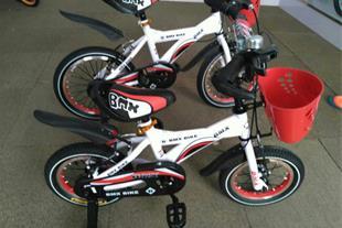 واردات و فروش دوچرخه BMX سفارشی دخترانه و پسرانه