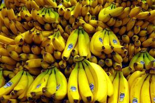 وارد کننده میوه موز خارجی