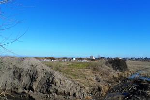 فروش زمین ساحلی هکتاری پلاک اول دریا