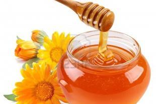 فروش انواع محصولات زنبورعسل - فروش عسل - 1