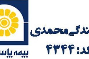 بیمه پاسارگاد - بیمه زندگی - بیمه اتومبیل