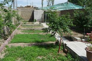 تصویر داخل باغ