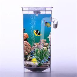 آکواریوم جادویی Fun Fish - 1