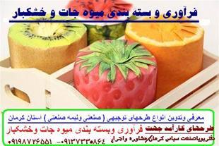 طرحهای توجیهی و تولیدی در استان کرمان