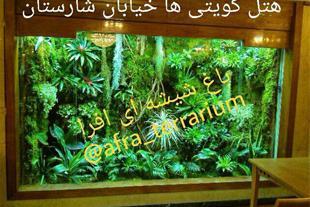 باغ شیشه ای افرا ، تراریوم افرا
