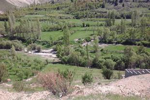 فروش زمین در روستای آسور