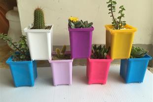 فروش گلدان پلاستیکی - 1