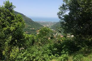 منظره دریا از بالاترین نقطه زمین