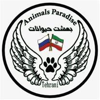 پانسیون حیوانات - 1