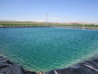 آرین خاک ایرانیان