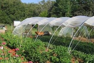 فروش پوشش های پارچه ای گلخانه ای و کشاورزی - 1