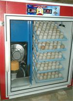 فروش دستگاه جوجه کشی تخم اردک - 1