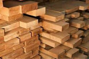 فروش چوب کاج روسی
