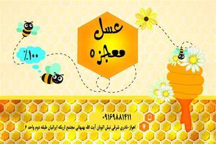 فروش عسل 100% طبیعی معجزه - 1