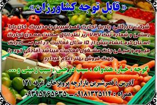 صادرات و واردات میوه