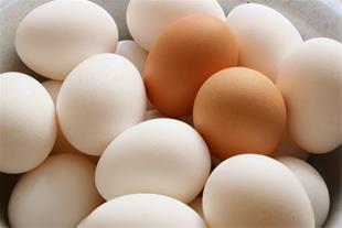 عرضه تخم مرغ در اراک